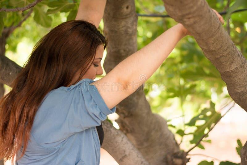 Девушка взбираясь на смоковнице стоковое фото
