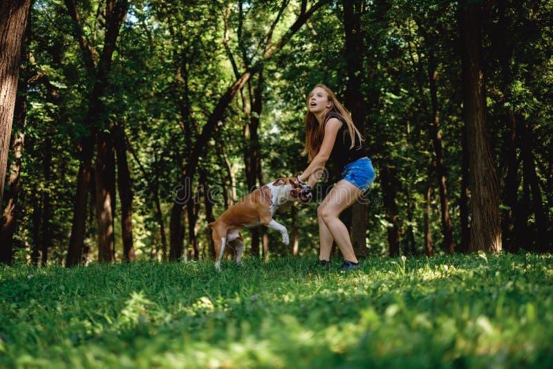 Девушка вытягивая ручку с ее собакой в парке стоковые фотографии rf