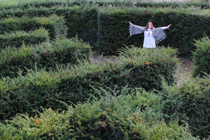Девушка в лабиринте yew стоковые фотографии rf