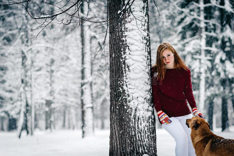 Девушка в бургундском свитере и белых брюках стоит полагающся против дерева около красной собаки между snowcovered лесом стоковые изображения