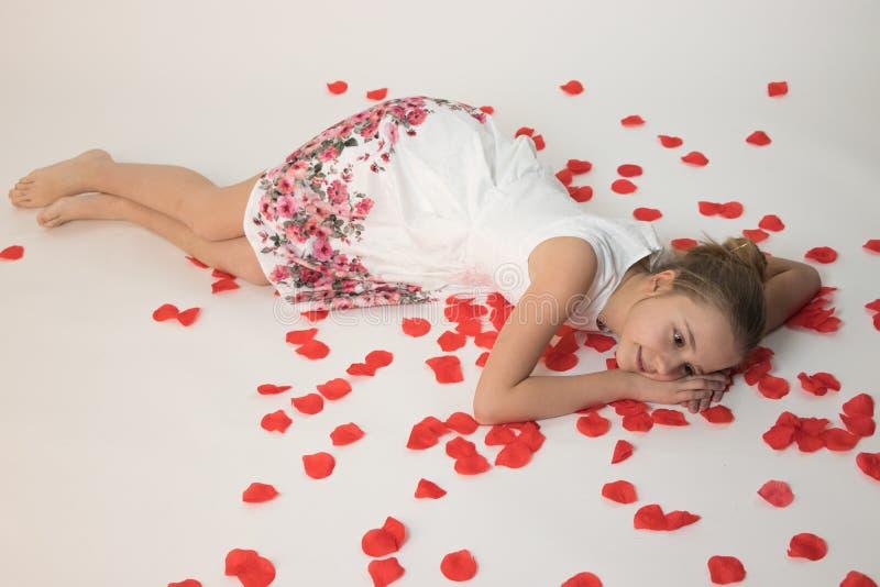 Девушка в влюбленности лежа на белизне изолировала предпосылку на лепестках красной розы стоковое изображение rf