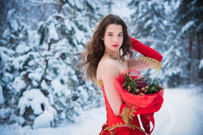 Девушка в изображении сказки ферзя представляет в покрытом снег платье леса зимы длиной красном, букете плодоовощей, красных ябло стоковая фотография
