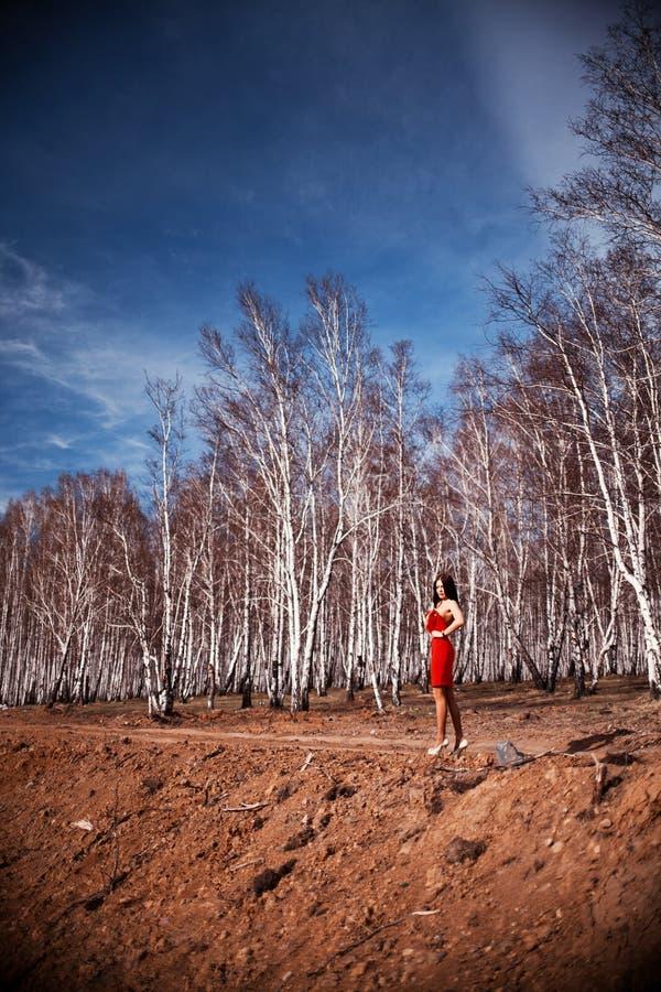Девушка в красном платье в роще березы стоковая фотография