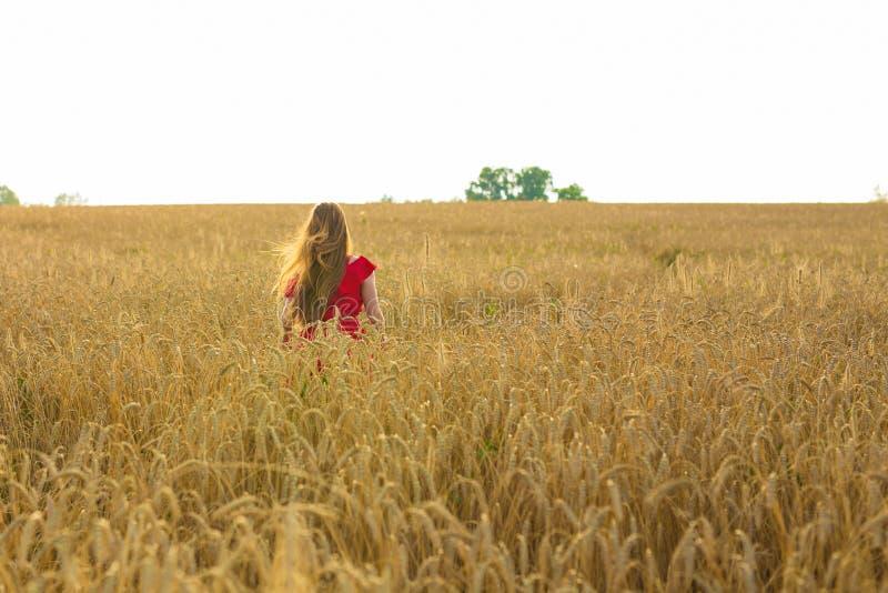 Девушка в красном платье на поле изолированная белизна вид сзади стоковое изображение