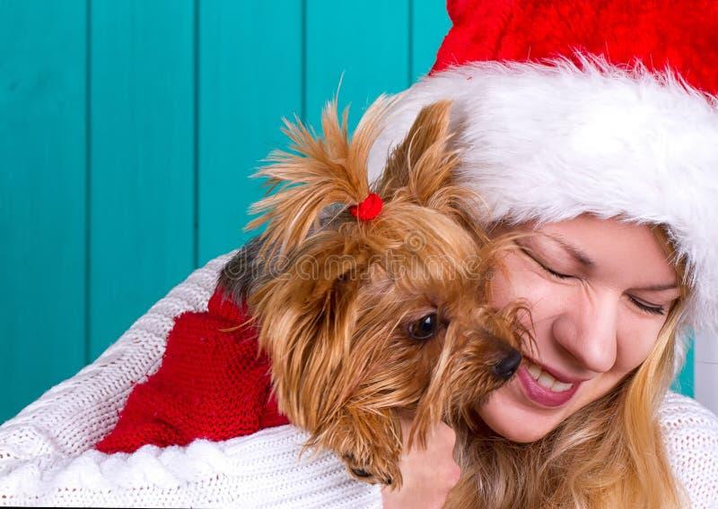Девушка в крышке santa с собакой yorkie в красном свитере стоковая фотография