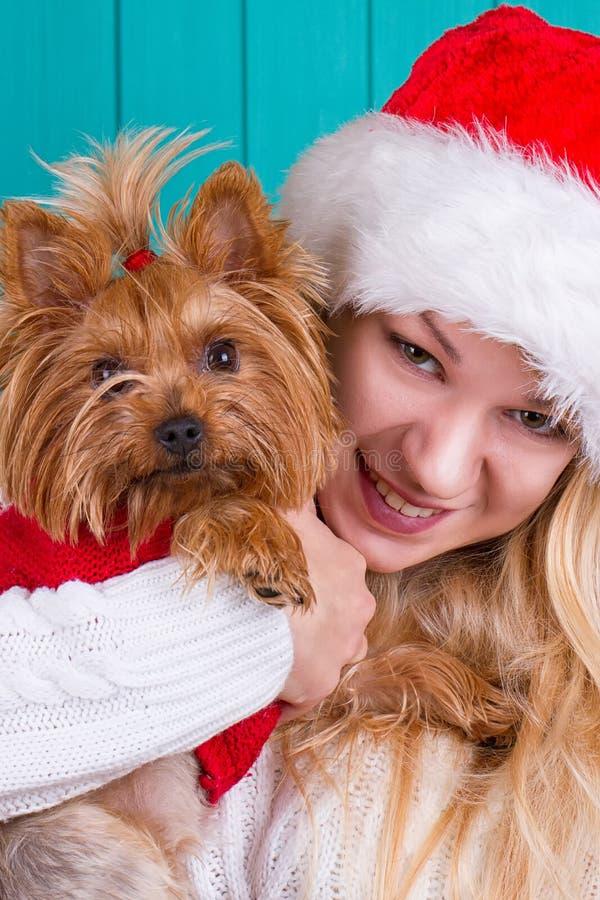 Девушка в крышке santa с собакой yorkie в красном свитере стоковые фото