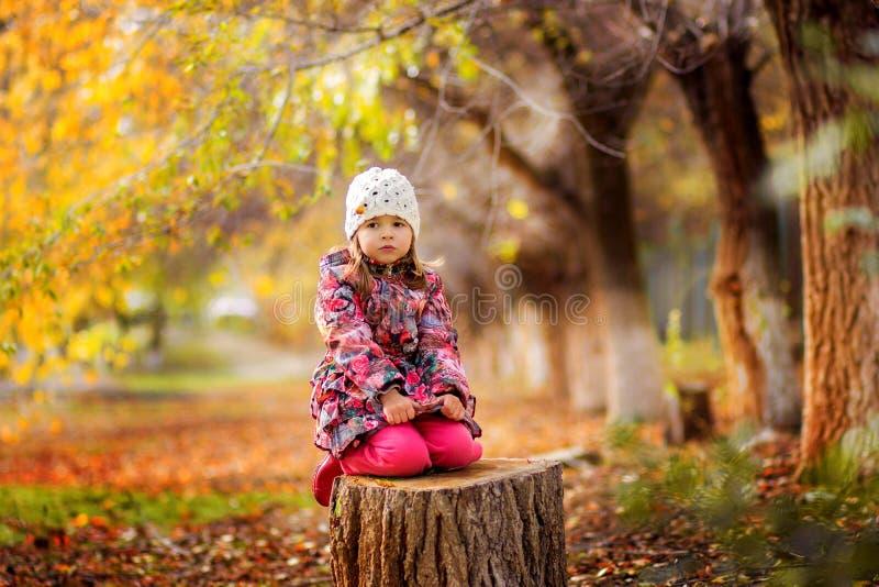 Девушка в куртке сидит на stub в парке осенью стоковые фото