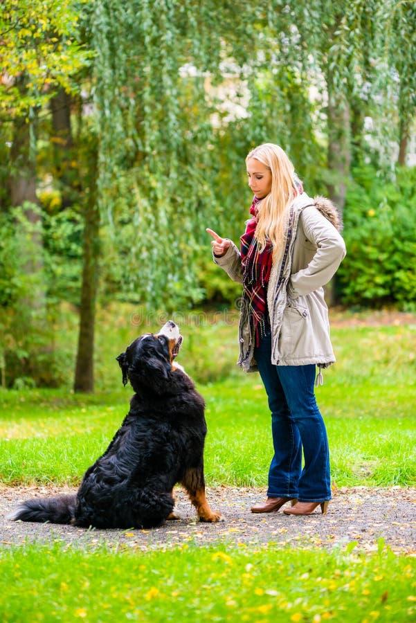 Девушка в парке осени тренируя ее собаку в повиновении стоковая фотография