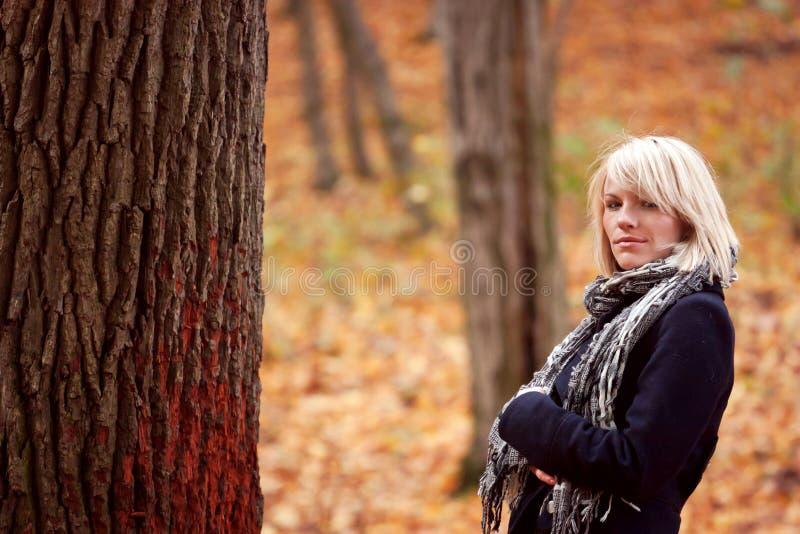 Download Девушка в парке стоковое изображение. изображение насчитывающей пуща - 33729953