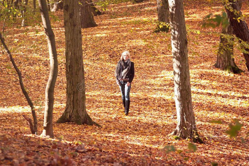 Download Девушка в парке стоковое фото. изображение насчитывающей счастливо - 33729958