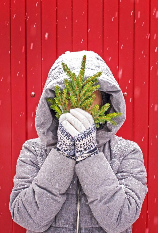 Девушка в связанных перчатках с орнаментом держит ветвь дерева ели на красной предпосылке деревянное украшений рождества экологич стоковое изображение rf