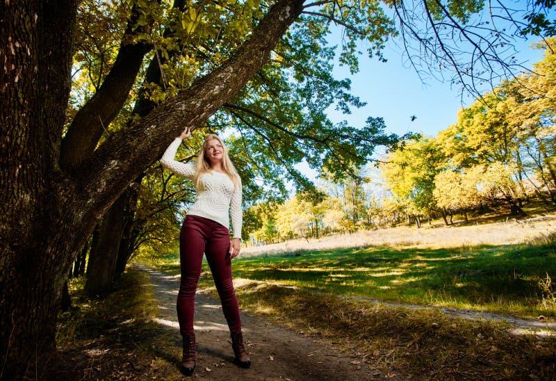 Девушка в солнечном парке стоковые фотографии rf
