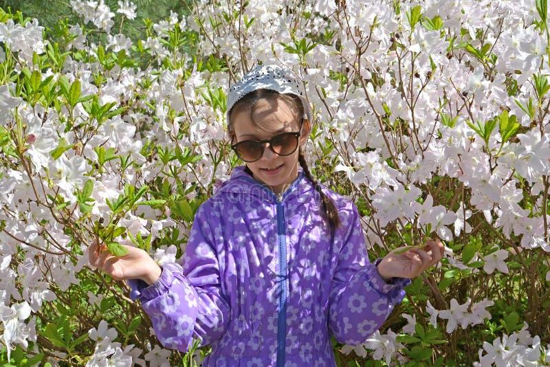 Девушка в солнечных очках на фоне рододендрона цвести Shlippenbakh в парке стоковые фото