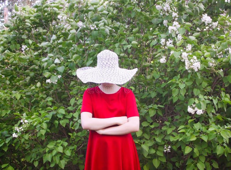 Девушка в шляпе и красном платье идя в малый сад в сельской местности на лете стоковое изображение