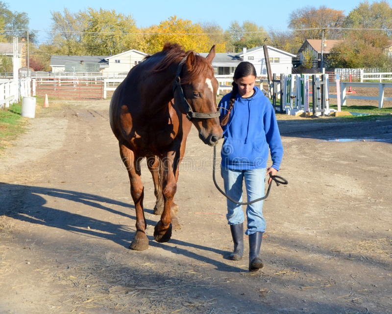 Девушка гуляя с лошадью на ферме стоковые фотографии rf