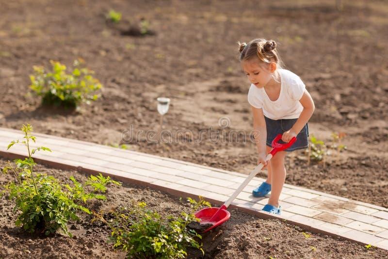 девушка дня садовничая меньшее лето стоковое изображение rf