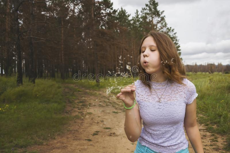 Девушка дуя на белом одуванчике в лесе стоковое фото