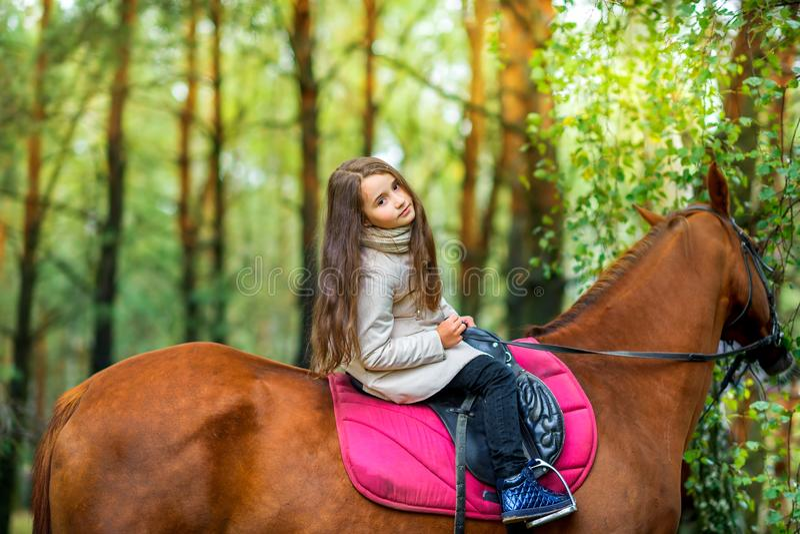 Девушка едет лошадь стоковое фото rf