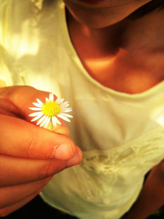 Девушка держа солнцецвет стоковые фото