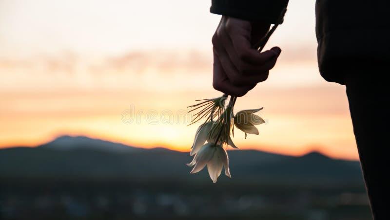 Девушка держа цветки, восхищая заход солнца стоковое фото rf