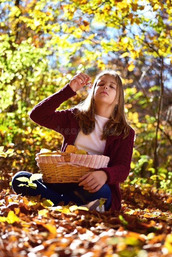 Девушка ест плодоовощ в природе стоковое фото rf