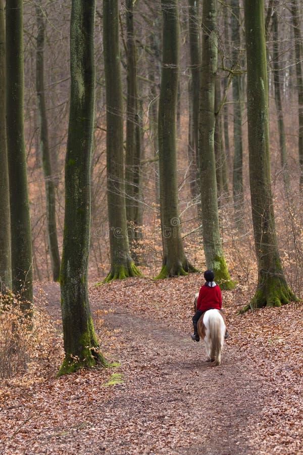 Девушка ехать пони стоковое изображение rf