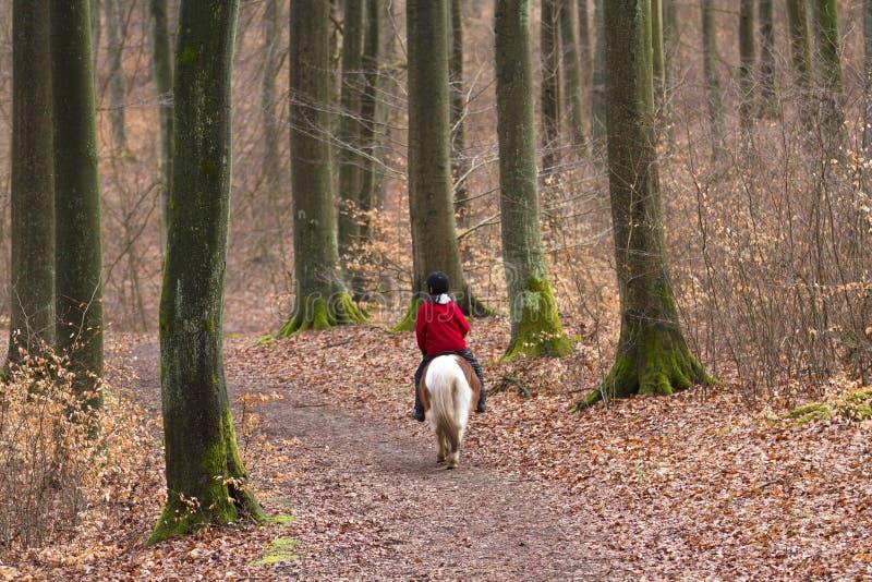 Девушка ехать пони стоковые изображения rf
