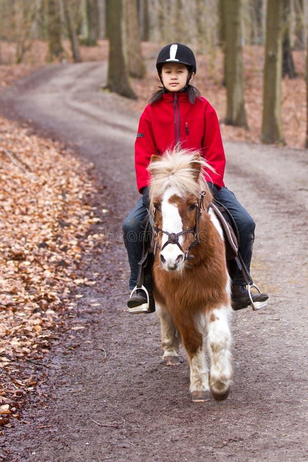 Девушка ехать пони стоковые фото