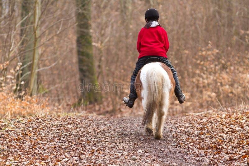 Девушка ехать пони стоковая фотография