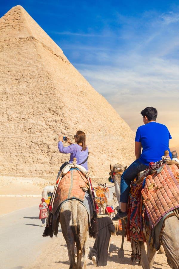Девушка едет верблюд на некрополе Гизы стоковое фото rf