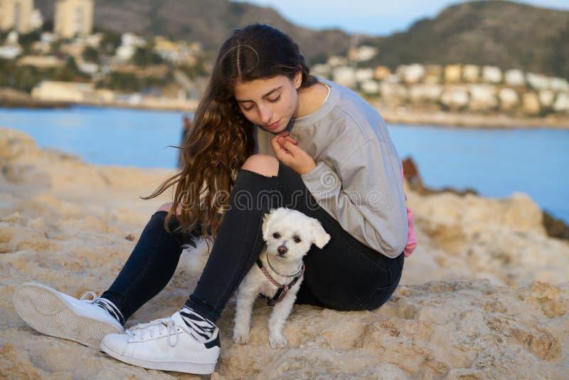 Девушка играя с собакой maltichon в пляже стоковое фото