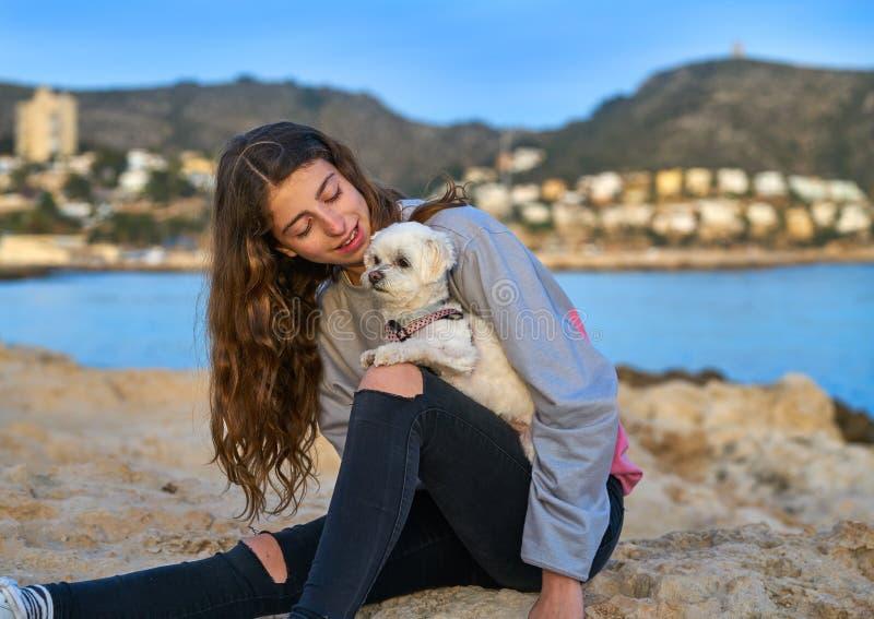 Девушка играя с собакой maltichon в пляже стоковое изображение