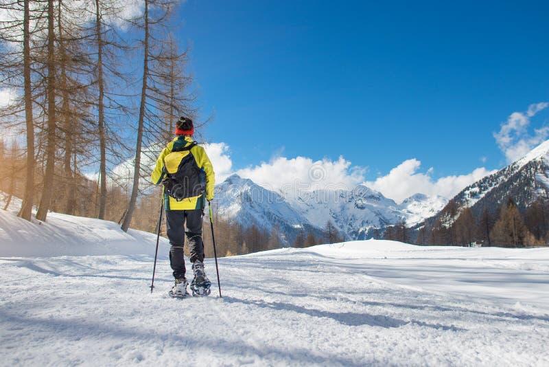 Девушка идет с snowshoes в уединении стоковая фотография