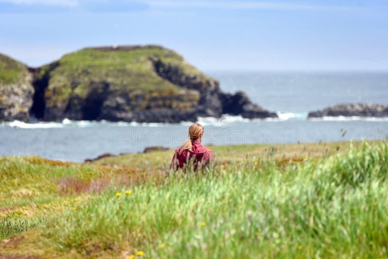 Девушка идя в поле в Ньюфаундленде стоковые фото