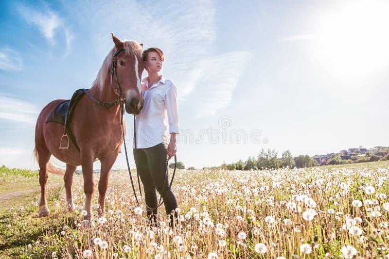 Девушка идя лошадь в поле стоковые изображения rf