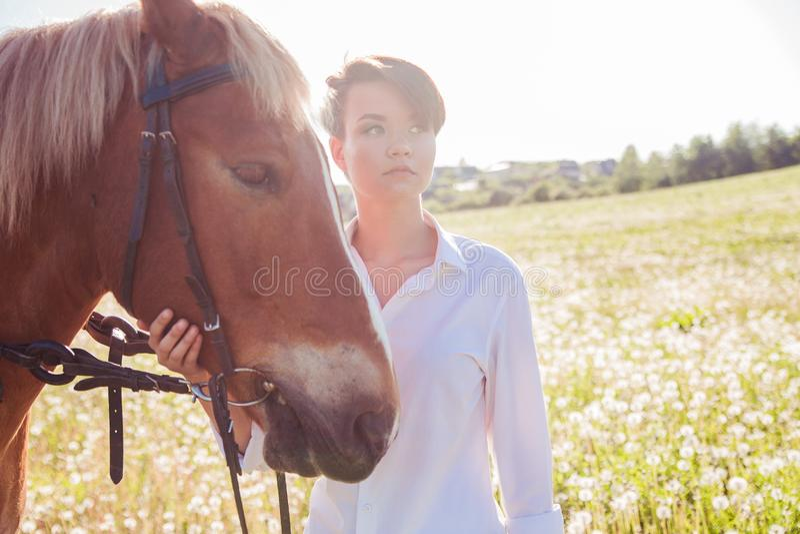 Девушка идя лошадь в поле стоковое изображение rf