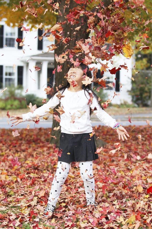 Девушка и листва стоковое изображение