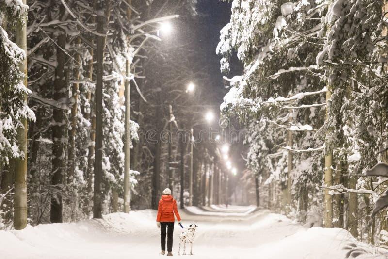 Девушка и собака в лесе зимы покрытом с снегом стоковое фото