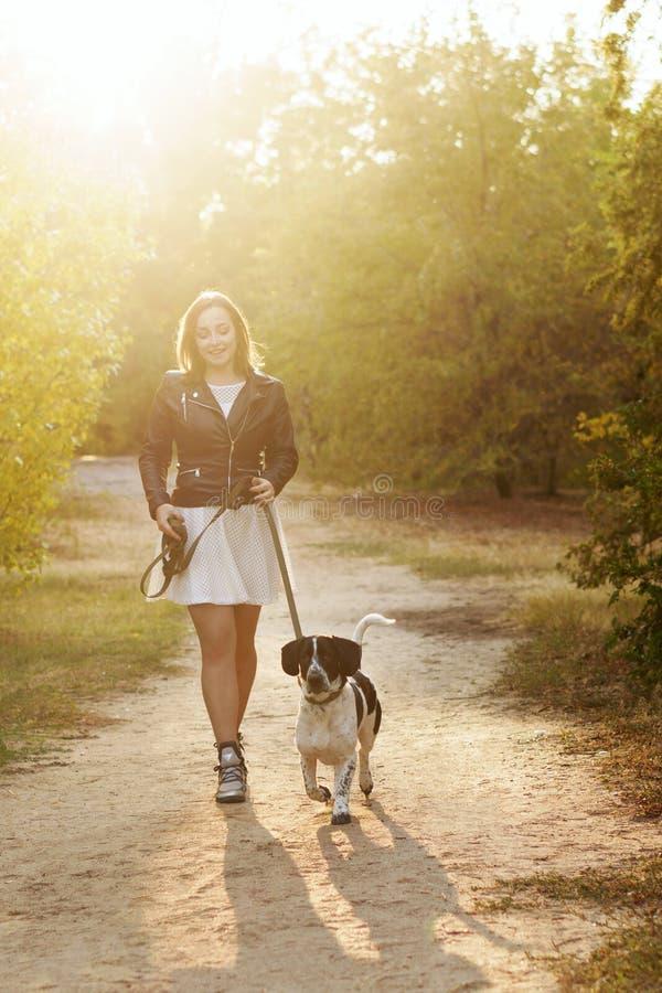 Девушка и собака в парке осени стоковое изображение rf