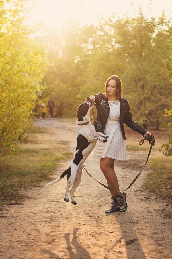 Девушка и собака в парке осени стоковые фото