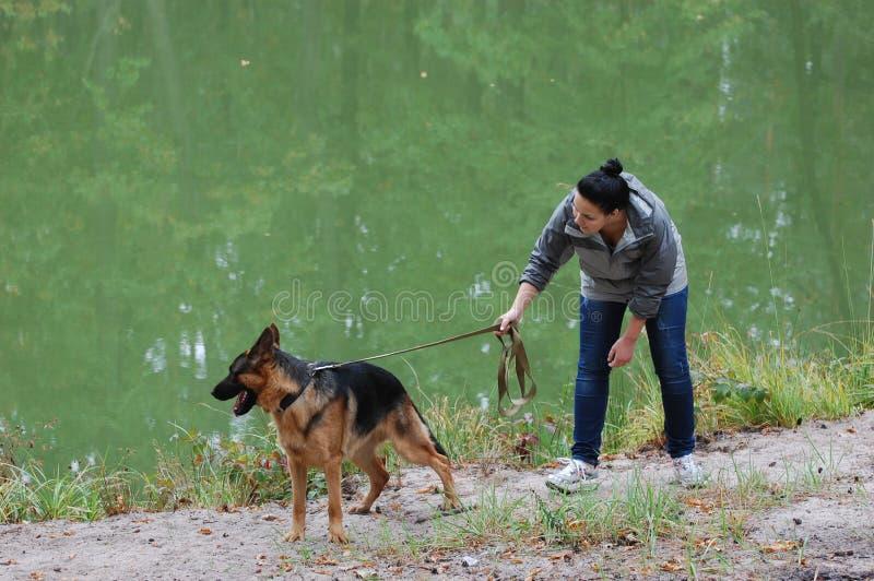 Девушка и собака стоковые изображения rf