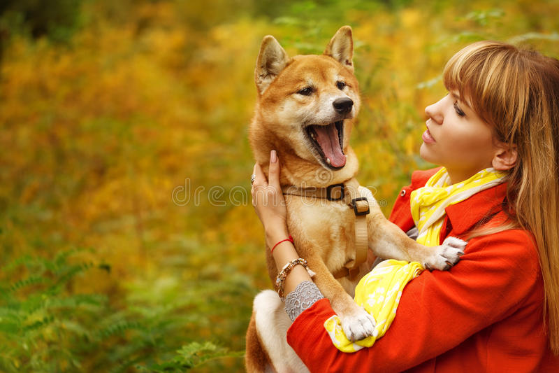 Девушка и собака Shiba Inu в осени паркуют стоковые изображения rf