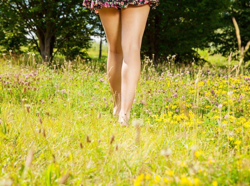Девушка идя прочь barefoot на траву стоковое изображение rf