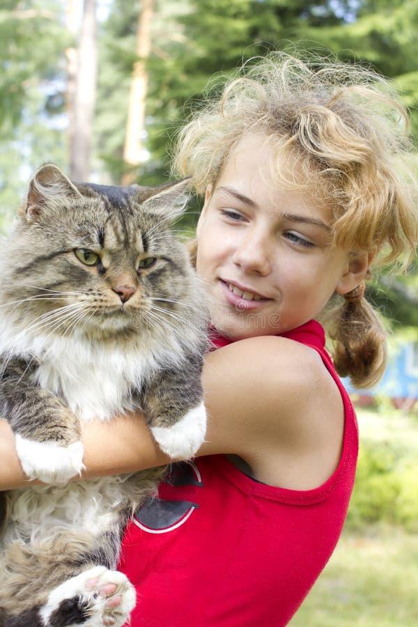 девушка кота стоковые изображения rf