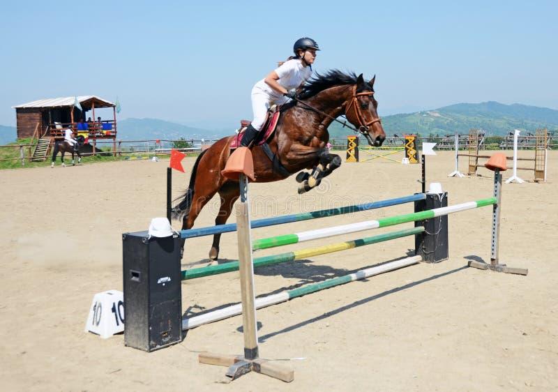 Девушка лошади стоковые фото