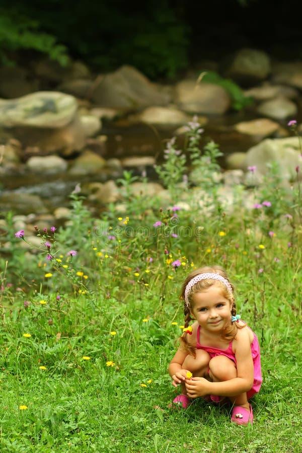 Девушка малыша выбирая вверх полевые цветки около реки горы стоковое изображение rf