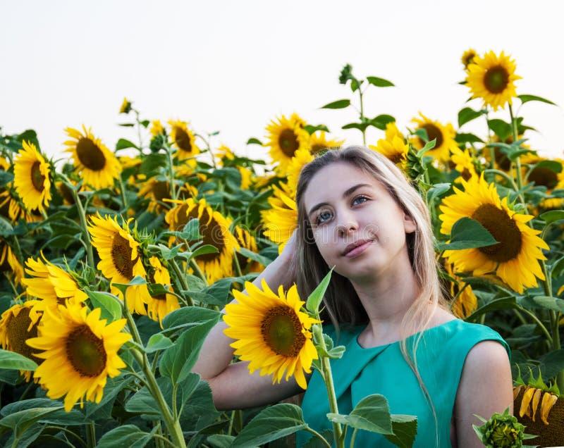 Девушка на поле солнцецветов стоковые изображения rf