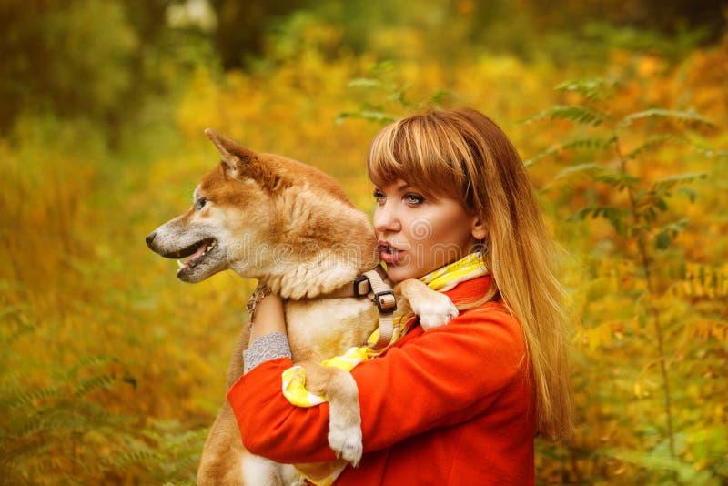 Девушка обнимает собаку Shiba Inu в парке осени стоковые фотографии rf