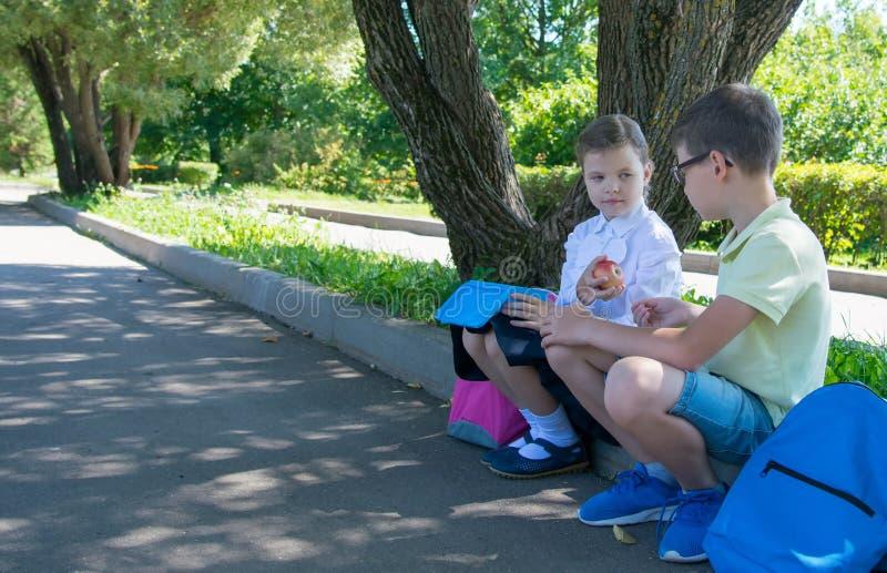 Девушка обрабатывает яблока мальчика после школы в улице стоковое фото