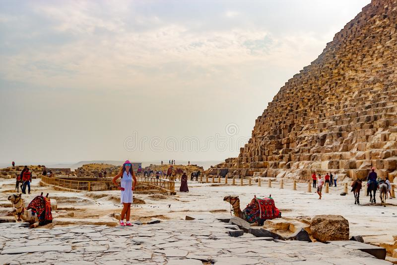 Девушка около верблюда и пирамиды в Каире, Египте стоковая фотография